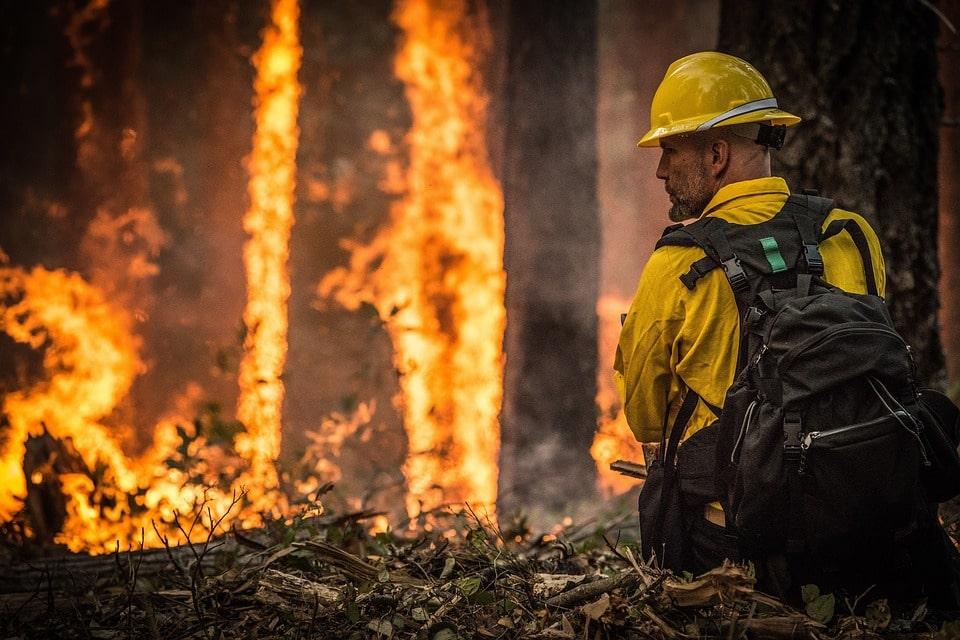 wildland firefighter image